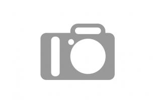 Karnizai Aspen Plius Ǿ25/19 FANTAZIJA sendintas auksas